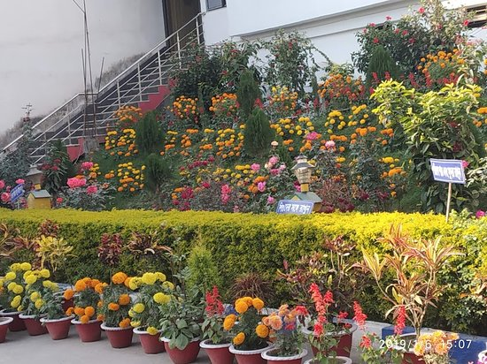 Malda District, Индия: Beautiful Garden at Aquatic Bengal