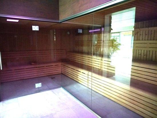 Saint-Geours-de-Maremne, France: Un sauna spacieux rénové en 2018!