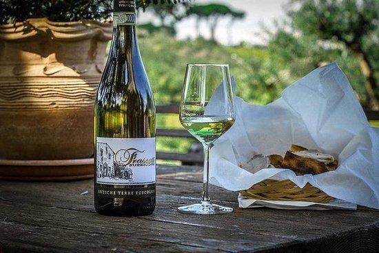Halvdag Frascati vinsmagningstur