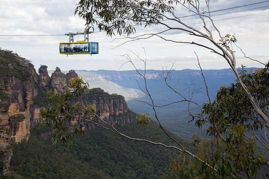 Blue Mountains Express & City...
