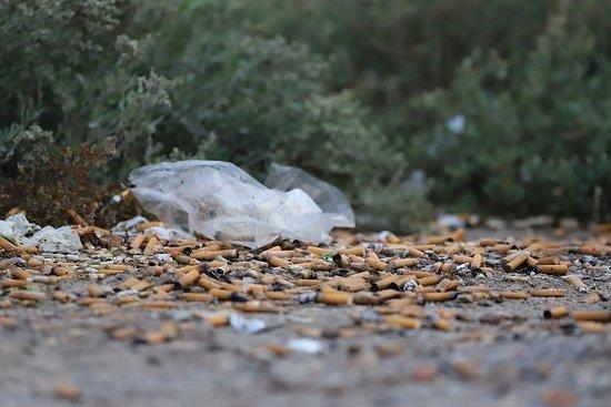 Chalastra, Grecia: Cigarettes in the national park.