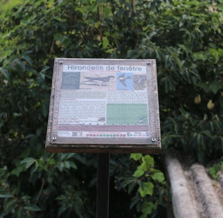 Sentier ornithologique de la Costa Verde