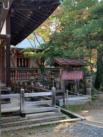 東大寺三月堂の南