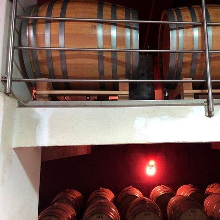 Oggau am Neusiedler See, Austria: Weinverkostung
