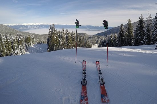 Cool Ski School