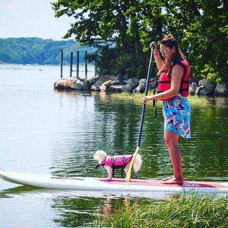 Stony Brook Harbor Kayak & Paddleboard Rentals