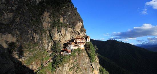One Bhutan International