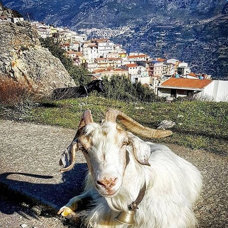 Provincia Ogliastra, Taliansko: Sardegna... terra e mare
