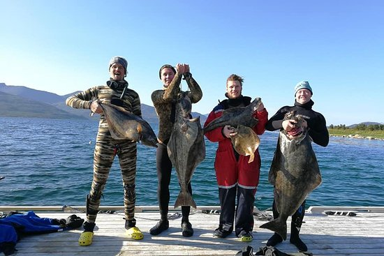 Arctic Spearfishing & guided fishing