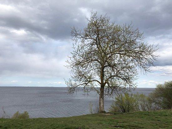 Озеро Ильмень: Ильмень у поселка Коростынь