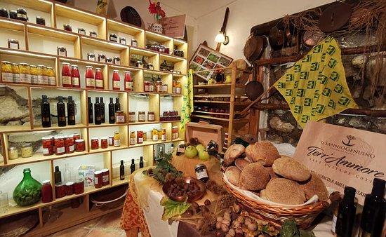 immagine Agriturismo Antico Pozzo degli Ulivi In Benevento