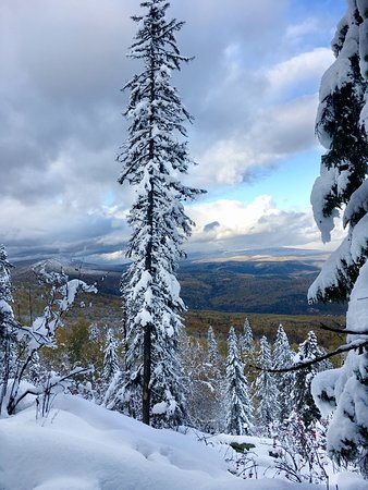 Начало октября на Айгире ⛰ Наверху – хрустящий снег, а внизу деревья в золоте.