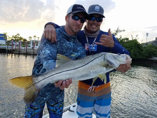 Holmes Beach, FL: Nice BIG Snook 33 inches!
