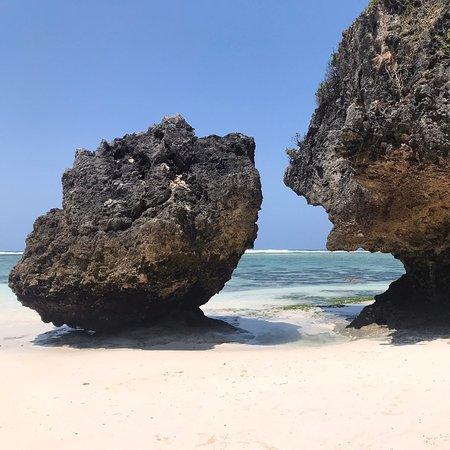 Mnemba, Tanzanija: bonjour tout le monde réservation encore disponible réserver vos voyages avec moi pour le prix honnête merci