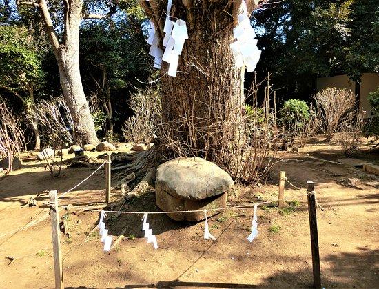 Kameishi(Turtle-Shape Stone)