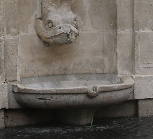 Fontaine du dauphin