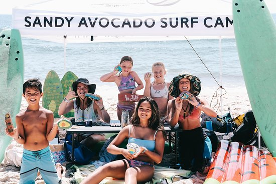 The Sandy Avocado Surf Camp