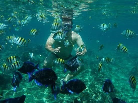 Procura Passeios de lancha que será inesquecível com várias recordações da natureza. 🐠🐚🦋, piscina naturais e ilhas paradisíaca. Reserve o seu passeio: SPEED BOAT - BETO (11) 94389-7131 (WhatsApp) Avenida Leovigildo Dias Vieria, 1180 Loja 103 Ubatuba - SP 11680-000 Agência de Passeios de Lancha no ramo há 40 anos. Embarcações cadastradas no ministério do turismo e Pilotos Habilitados