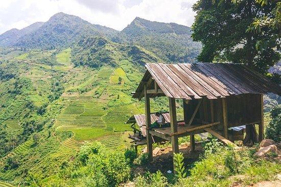 Vietnam Saving Tours