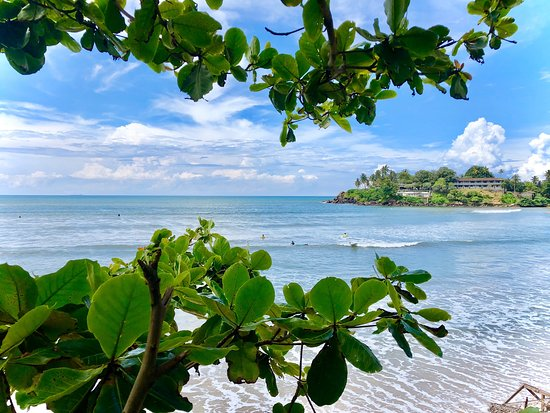 Ocean View Surf School