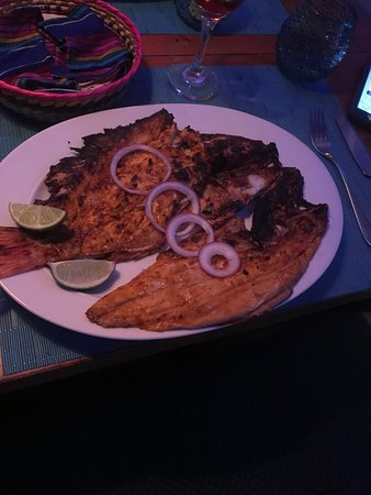 Red Snapper!
