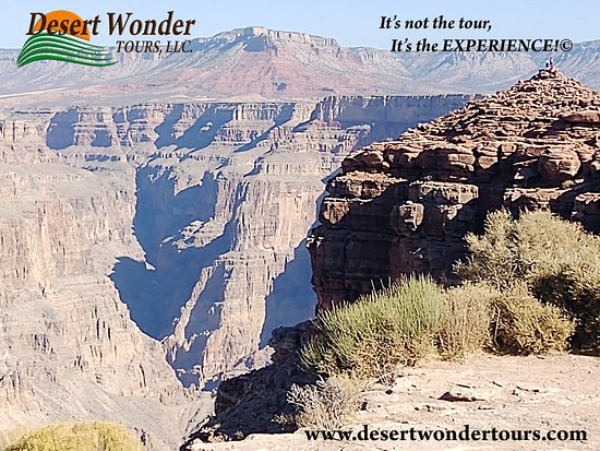 Desert Wonder Tours & Trips