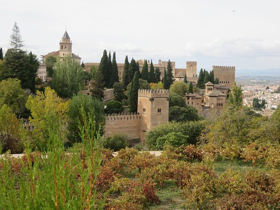 Alhambra and Generalife Premium-group Guided Tour: l Alhambra