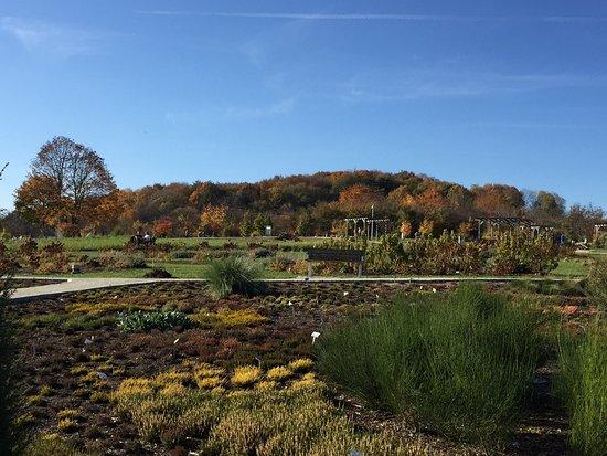 Ogrod Botaniczny GeoPark Kielce