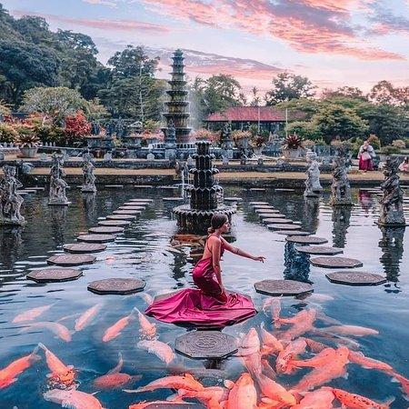 Dungky Bali Tour