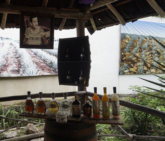 Mi Mexico Lindo Tequila Tour