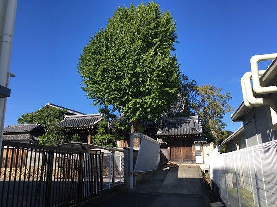 Marukei-ji Temple
