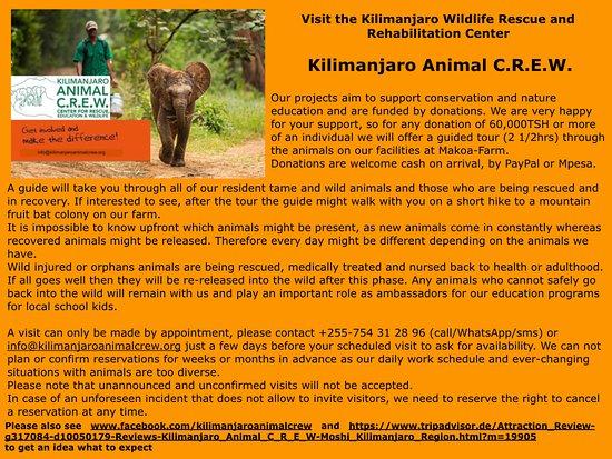 Kilimanjaro Animal C.R.E.W.