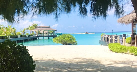 Best tour company in the Maldives