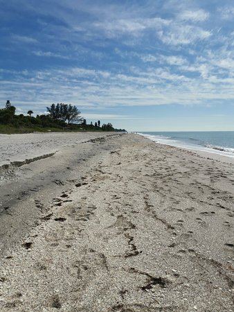 Blind Pass Beach (Englewood) - 2019 All You Need to Know ...
