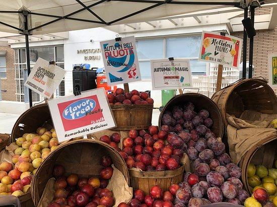 Manhattan Beach Farmers Market