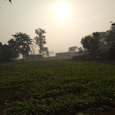 Siddharth Nagar District, India: Amazing village tour experience in Indian village's