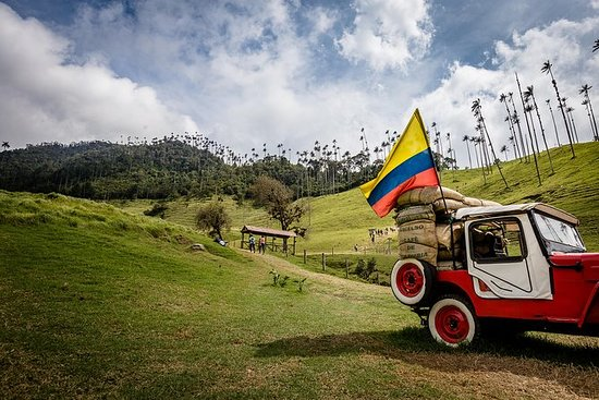 Cali, Salento und Medellin Salsa zur Kaffeetour / 8 Tage: 8 Day Cali to Medellin, Salsa and Coffee tour