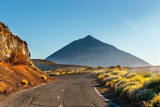 Guided tour to Teide Volcano, Los...