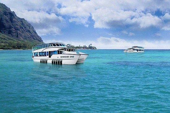 Hawaii Semisub VIP Reef Tour ...