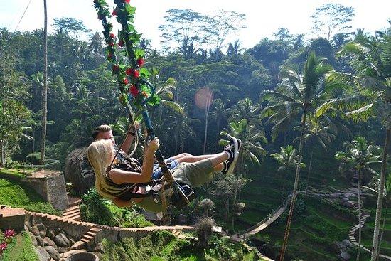 Ubud Monkey Forest - Ubud Market - Swing - Rice terrace - Waterfall