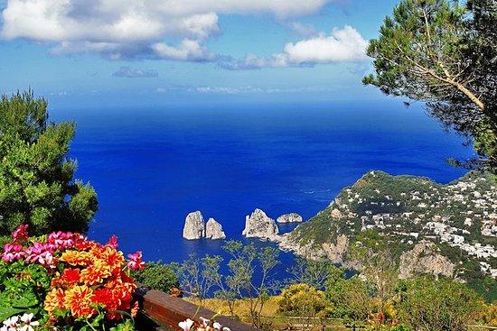 Capri e Anacapri - passeio a pé privado...