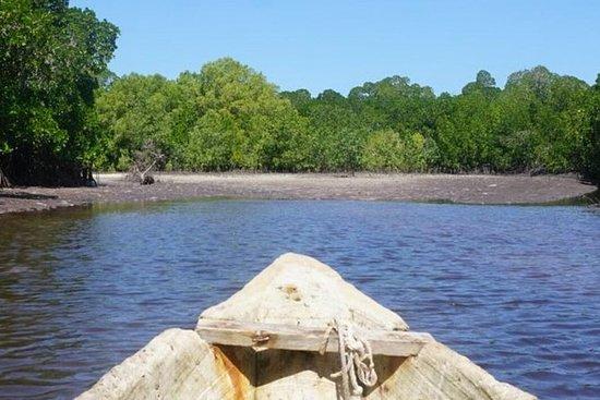 Mida Creek Boardwalk and Canoa Ride