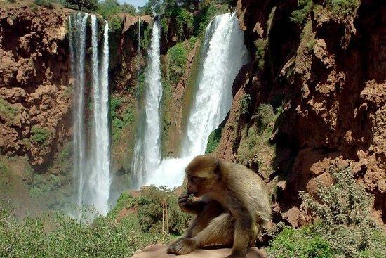 马拉喀什至乌祖瀑布瀑布一日游