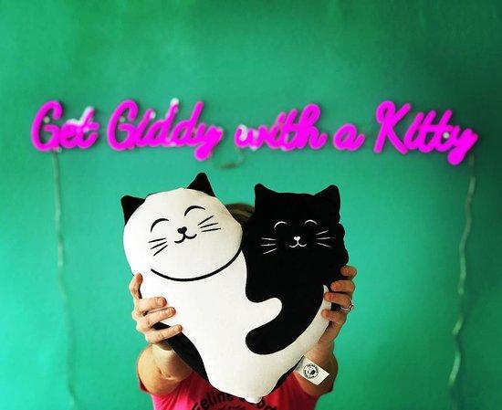 Feline Good Social Club