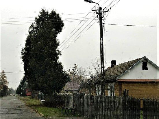 Zlobek, Poland: Żłobek on november 2019