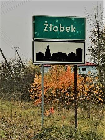 Zlobek, Polonia: Żłobek on november 2019
