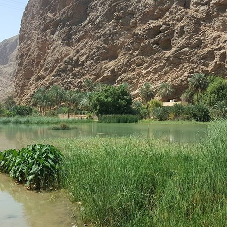Nasser AL Daoudi: Nasser AL Daoudi