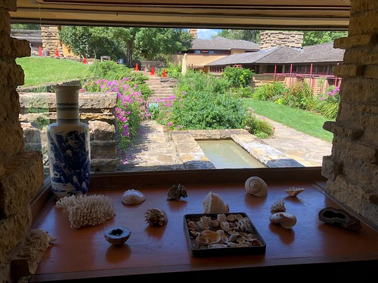 Frank Lloyd Wright Visitor Center: View from a window with shell collection