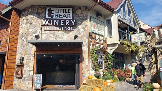 Little Bear Winery