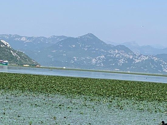 Lake Skadar in September